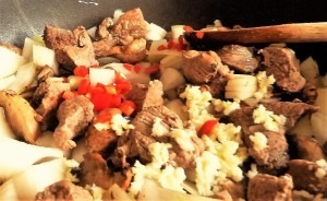 Beef stroganoff (4)