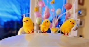 Easter Cake (6)