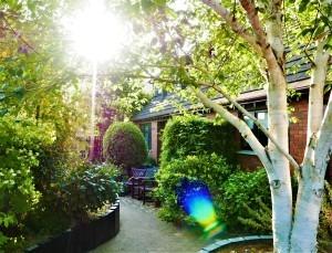 June 6th front garden (1)