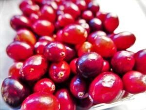 Cranberry (1)