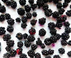 Blackberry Liqueur (8)