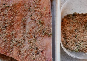 Dry Cure for Bacon (1)