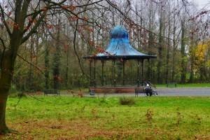 November 17th Ormeau Park (1)