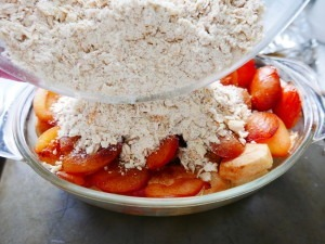 Apple and Plum Crumble (7)