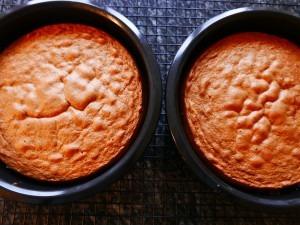 Tiramisu Cake (16)