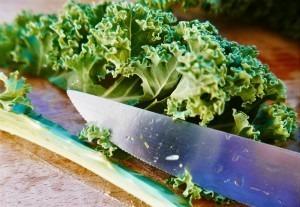 Roasted Kale (4)