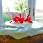 The Orange Yoghurt Cake with a simple orange-flavoured icing