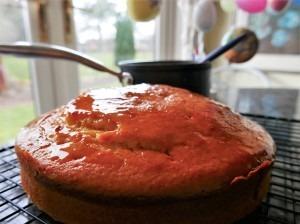 Orange and yoghurt cake (8)